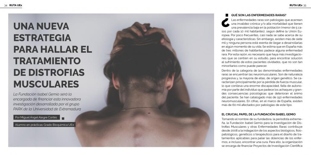 Revista Viceversa Grupo Investigación PARK Fundación Isabel Gemio