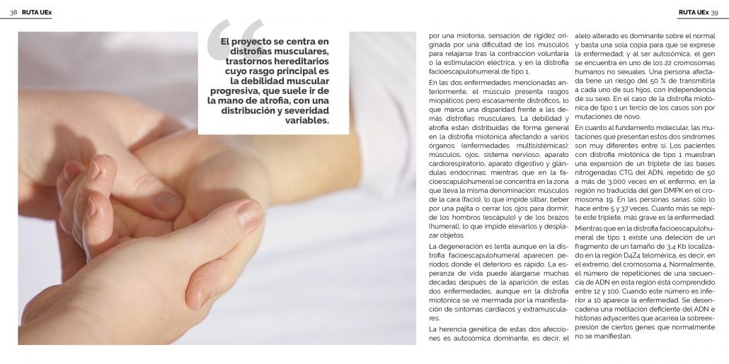 Revista Viceversa Grupo Investigacion PARK Fundación Isabel Gemio