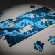 genetica clinica especialidad fundacion isabel gemio
